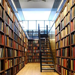 Библиотеки Артема